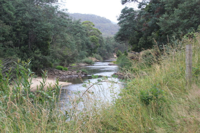 Tasmania - One of our many campsites by the river