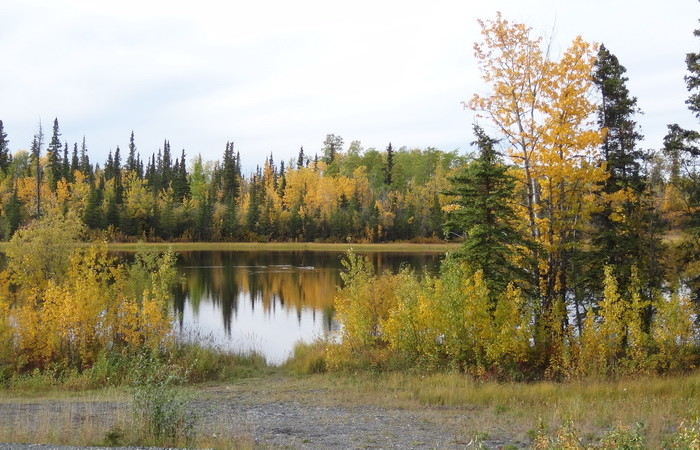 Day 7 - One of the many beautiful Alaskan lakes