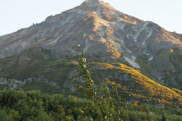 Day 2 - King Mountain