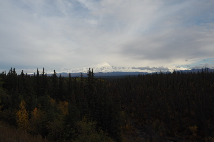 Day 7 - View of Mt Sanford