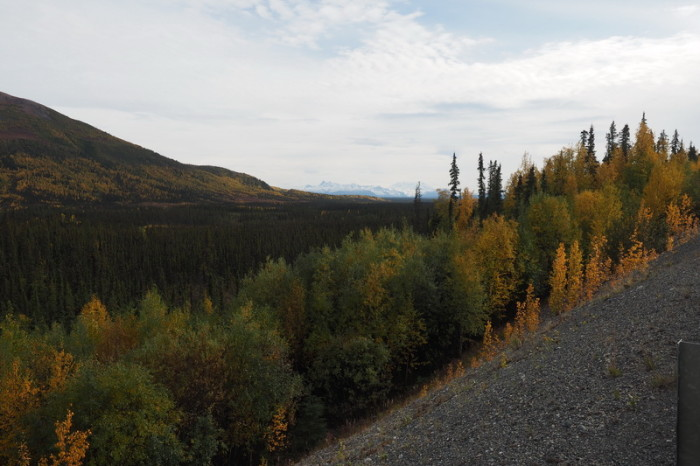 Day 8 - Views of the Wrangell Mountains