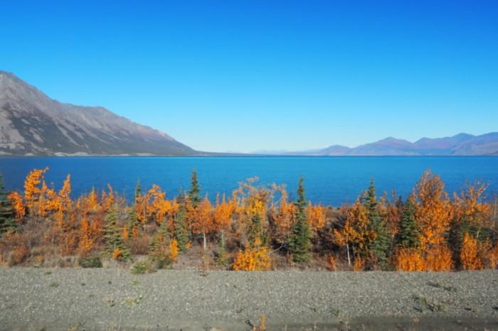Canada 105 - Kluane Lake