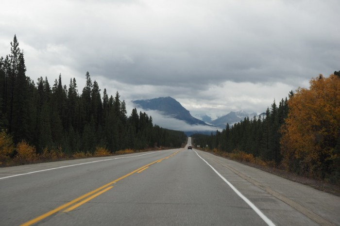 Canada 261 - Driving along the Icefields Parkway
