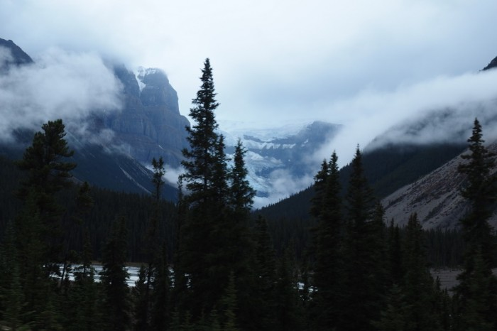 Canada 264 - Driving along the Icefields Parkway