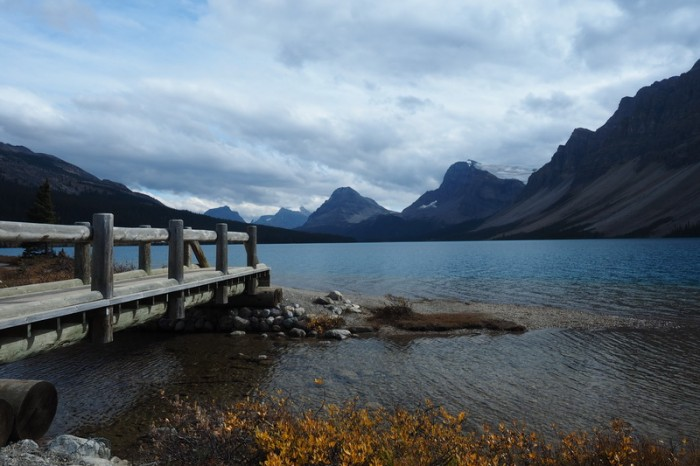 Canada 290 - Bow Lake, Icefields Parkway