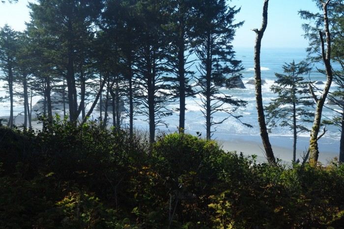Olympic Peninsula, Washington State - Ruby Beach