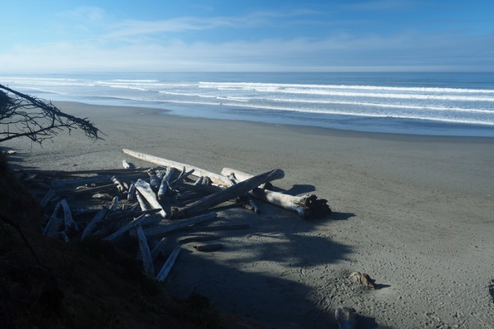 Olympic Peninsula, Washington State - View from Kalaloch Campground