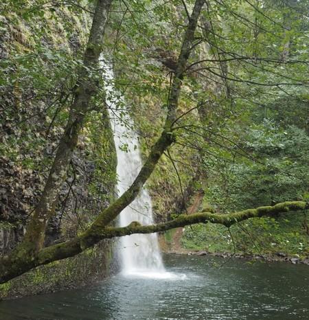 Portland, Oregon - Horsetail Falls