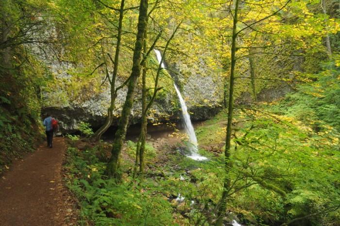 Portland, Oregon - David hiking towards Horsetail Falls