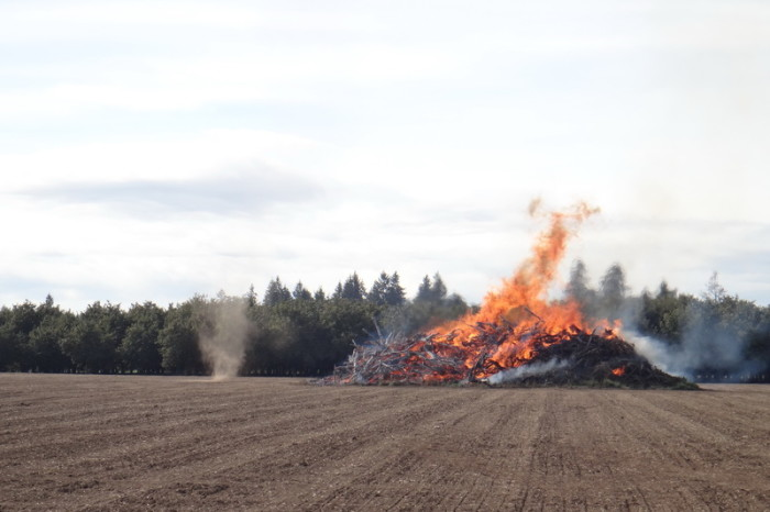 Portland to San Francisco - Controlled burning in the Willamette Valley
