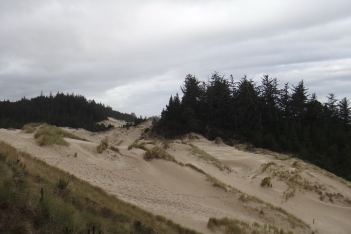 Portland to San Francisco - Sand Dunes near Florence, Oregon