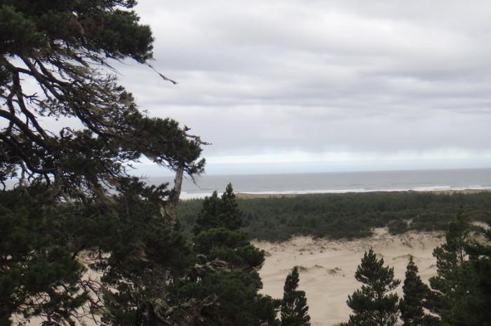 Portland to San Francisco - Sand Dunes near Florence, Oregon