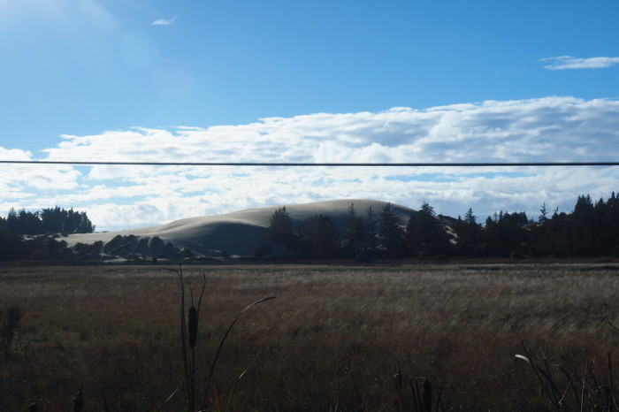 Portland to San Francisco - Sand Dunes on the road to Coos Bay