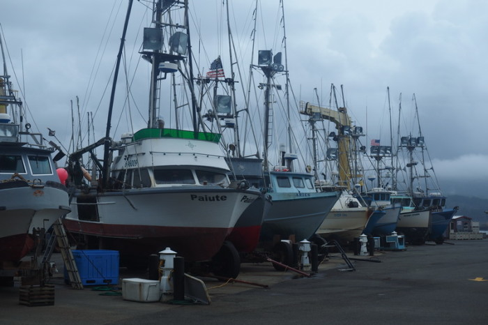 Portland to San Francisco - Ships in the Harbour at Port Orford