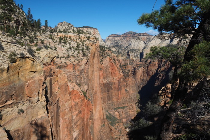 USA Road Trip - Views from the West Rim Trail, Zion National Park, Utah
