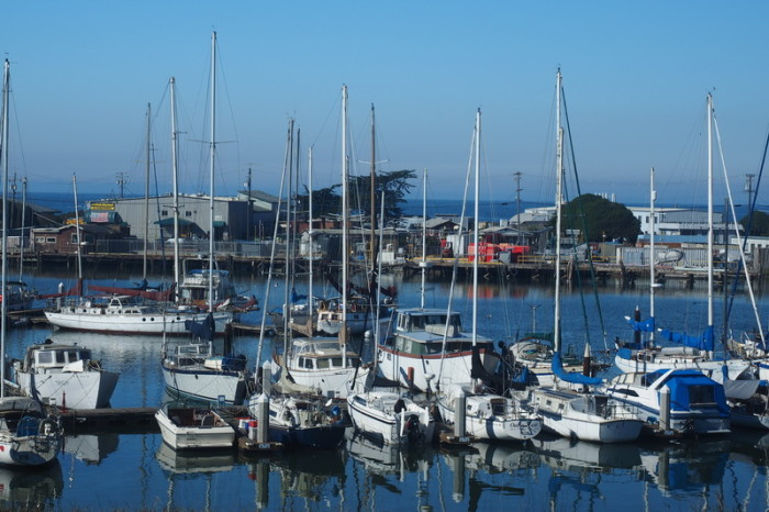 SF to LA - The harbour at Moss Landing