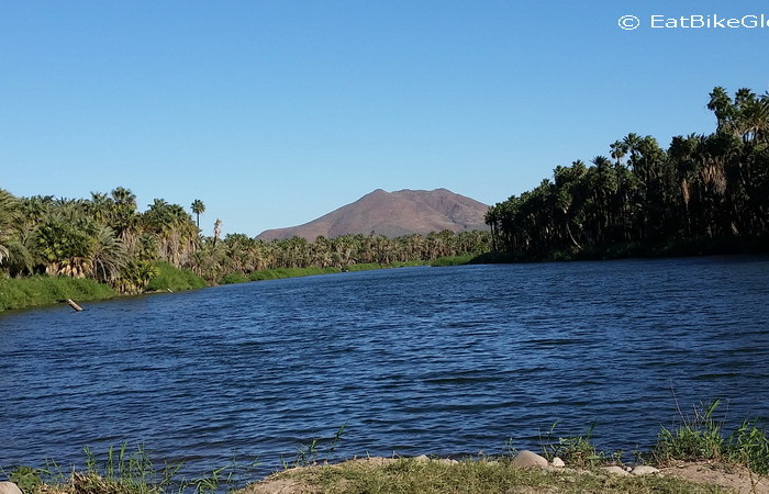 Baja California - Cycling into San Ignacio past the beautiful, leafy lagoon