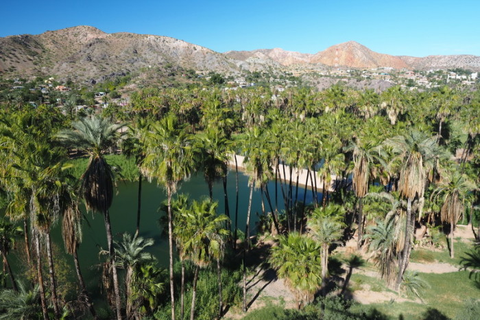 Baja California - Views over leafy Mulege from Mision Santa Rosalia de Mulege