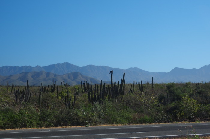 Baja California - On the road to Cabo San Lucas