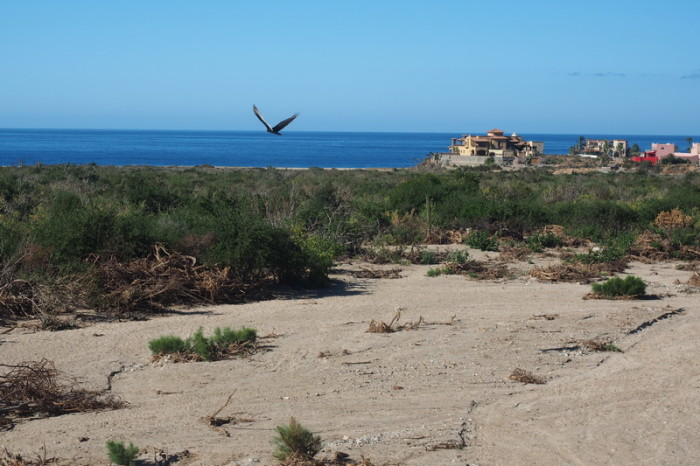 Baja California - Views of the beach at El Pescadero, near Todos Santos
