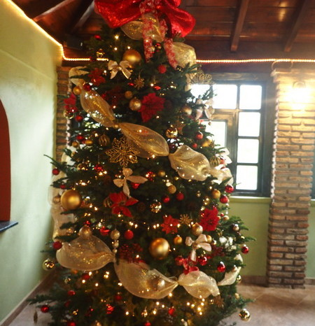 Baja California - Our first Mexican Christmas Tree! Restaurant Los Naranjos, Guadalupe Valley