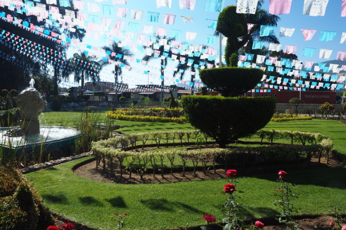 Day trip to the Valle de Tlacolula  - The beautiful church garden at El Tule