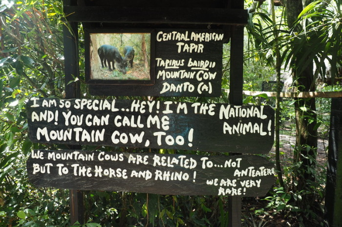 Belize - An example of some of the cool signs at the Belize Zoo!