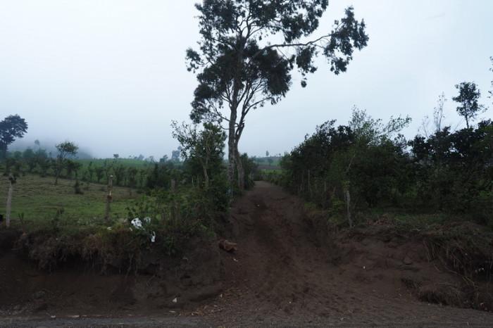 Guatemala - The start of our hike up Volcano Acatenango, Guatemala