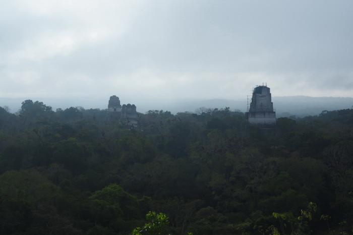 Guatemala - View from Tikal Temple IV, Tikal, Guatemala