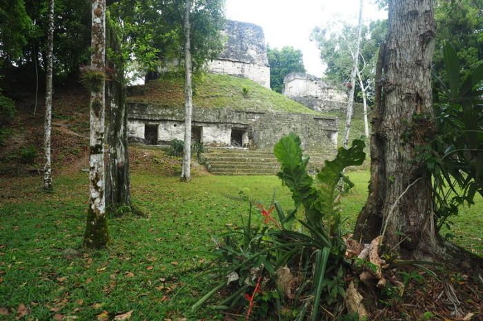 Guatemala - Beautiful Tikal, Guatemala