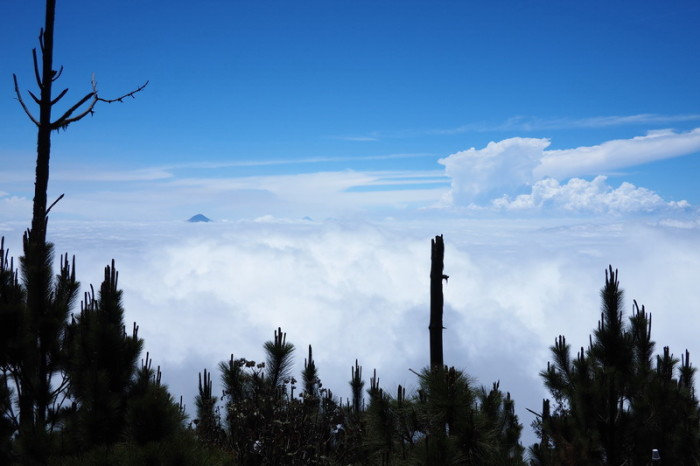 Guatemala - The view from lunch - finally above the clouds!  Volcano Acatenango, Guatemala
