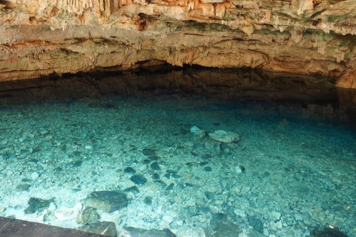 Mexican Road Trip - Dzombakal Cenote, San Antonio Mulix, Yucatan, Mexico