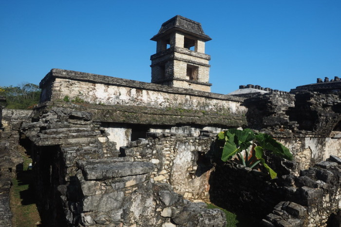 Mexican Road Trip - The Palace and tower, Palenque, Chiapas, Mexico