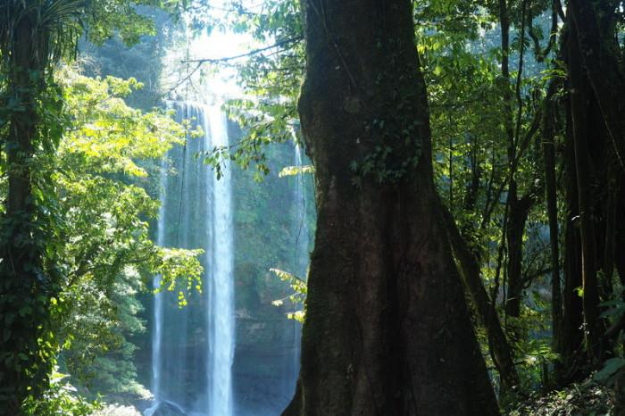 Mexican Road Trip - Misol-Ha Waterfall, Chiapas, Mexico
