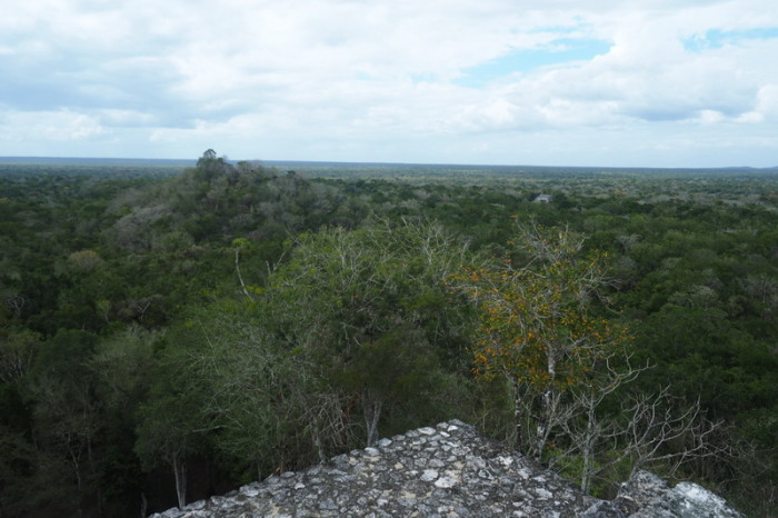 Mexican Road Trip - Views out over the Calakmul Biosphere from one of the pyramids, Calakmul, Campeche, Mexico