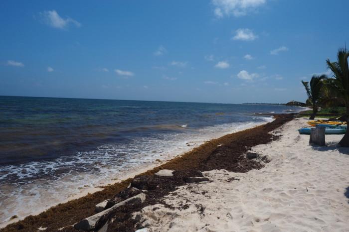 Mexican Road Trip - The beach at Mayan Beach Garden, near Mahahual, Quintana Roo, Mexico