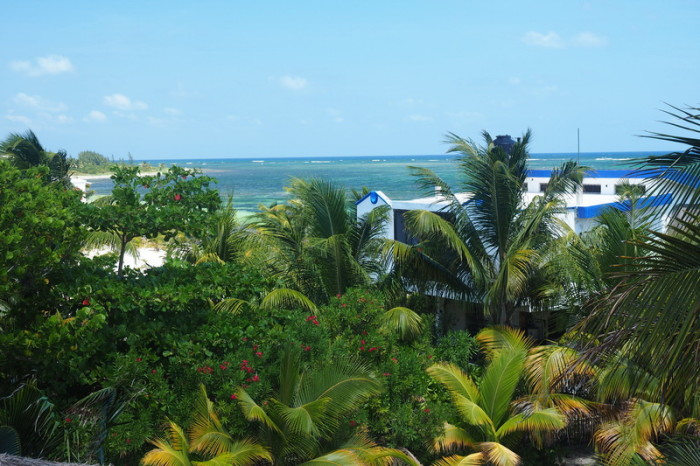 Mexican Road Trip - The view from the roof above our villa! Mayan Beach Garden, near Mahahual, Quintana Roo, Mexico