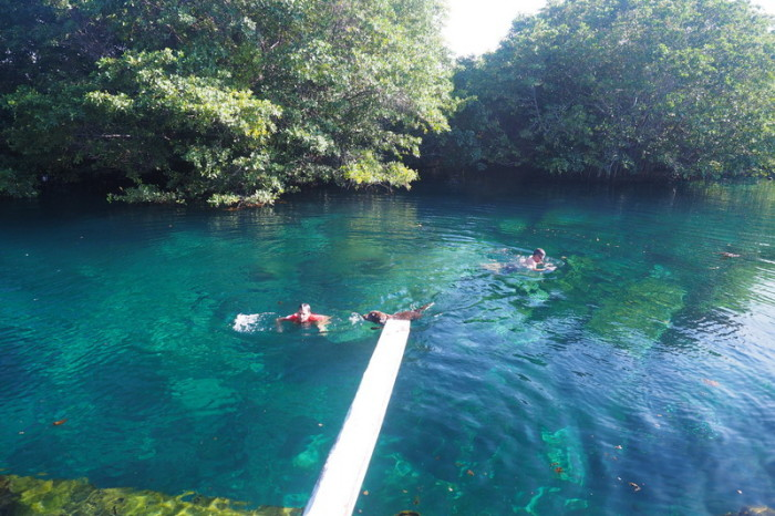 Mexican Road Trip - The beautiful cenote - what a find! Quintana Roo, Mexico