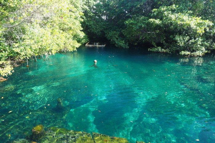 "Mexican Road Trip - The beautiful ""free"" cenote! Quintana Roo, Mexico"