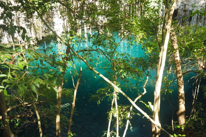 Mexican Road Trip - One of our favourites, Yokdzonot Cenote, Yokdzonot, Yucatan, Mexico