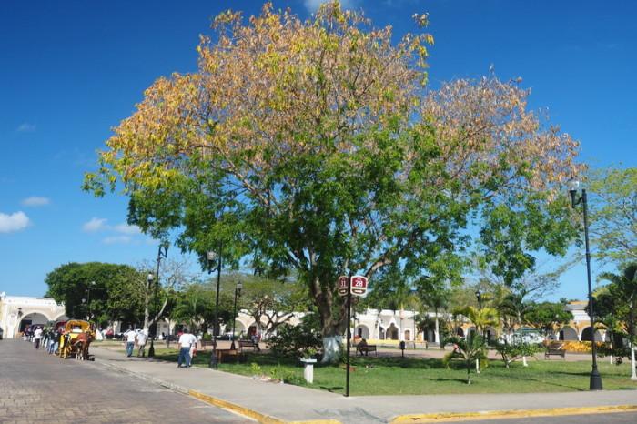 Mexican Road Trip - Itzamna Park (Parque Itzamna), Izamal
