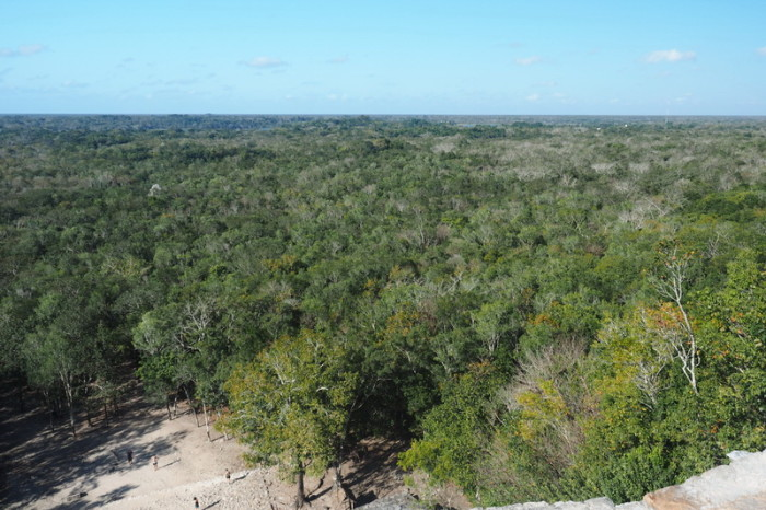 Mexican Road Trip - The view from Nohuch Mul pyramid at Coba, Quintana Roo, Mexico