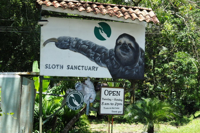 Costa Rica - Costa Rica's Sloth Sanctuary!