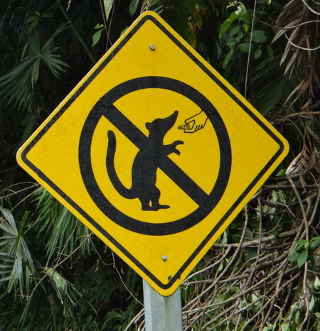 Costa Rica - Don't feed the animals!