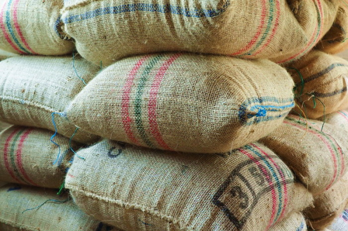 Colombia - Sacks of coffee beans ready for sale, Hacienda Venecia, near Manizales
