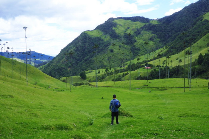 Colombia - David descending into the Valley de Cocora, near Salento