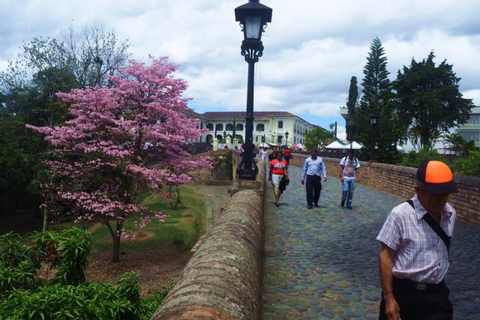 Colombia - Puente Del Humilladero, Popayan