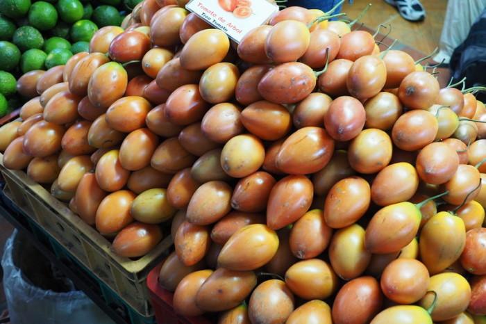 Colombia - Tomate de Arbol = Tree Tomato
