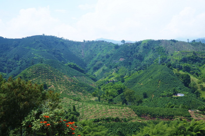 Colombia - Beautiful views in the coffee region