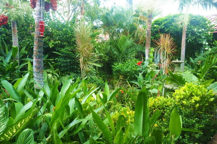 Nicaragua - The lovely Garden Cafe, Granada, Nicaragua